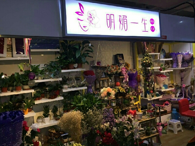 北京明媚一生花店
