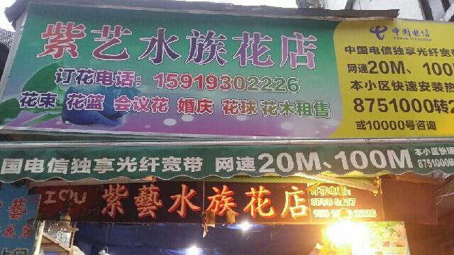紫艺水族花店