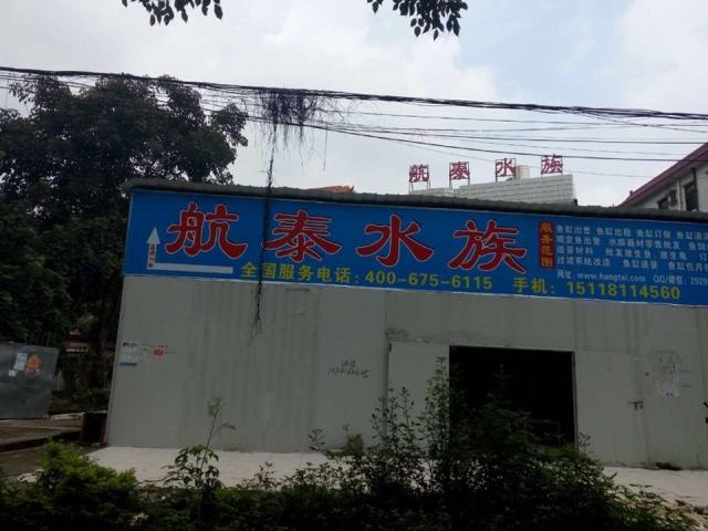 深圳市航泰水族有限公司(平湖店)