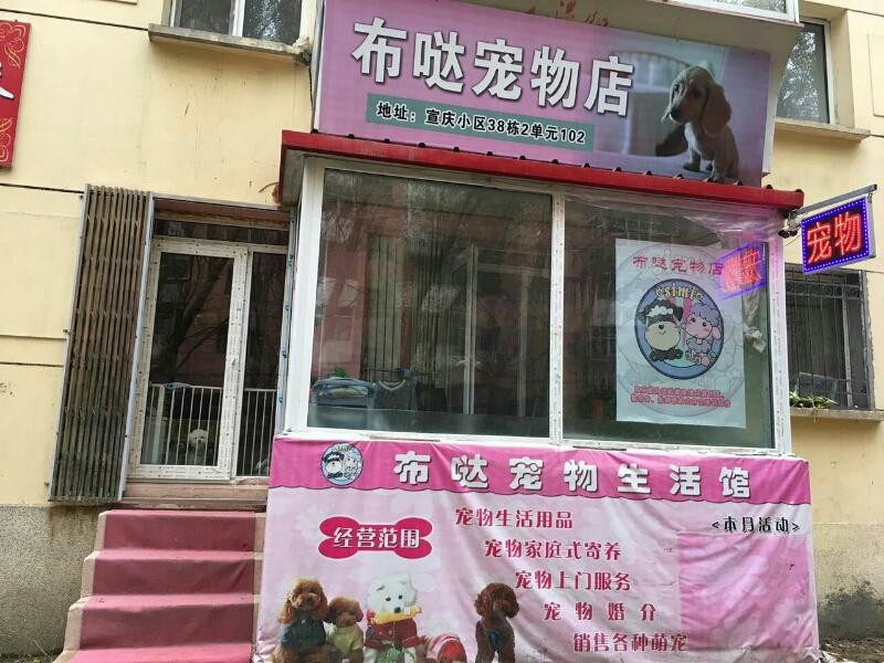 布哒宠物店