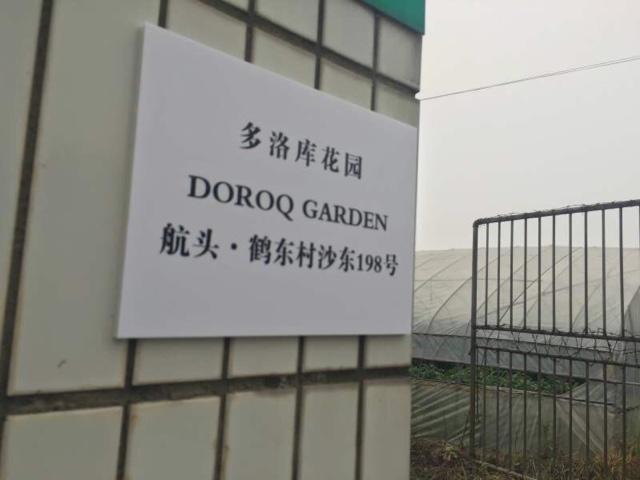 多洛库花园园艺中心(航头店)