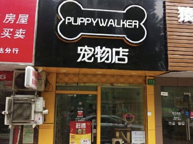 Puppywalker宠萌宠物服务