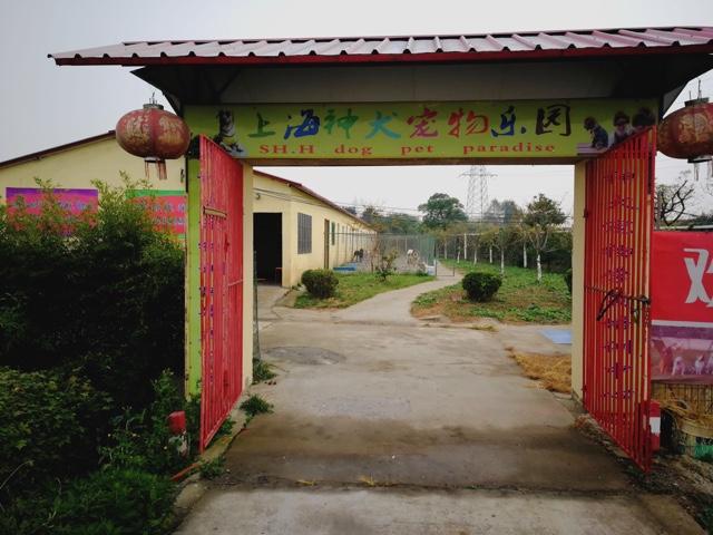 上海神犬宠物乐园