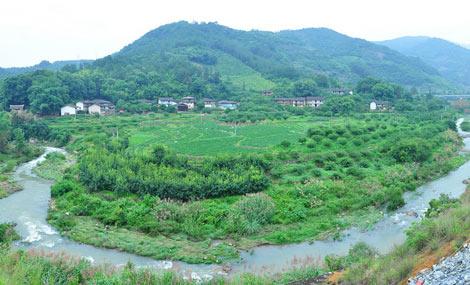 文埕湾生态园