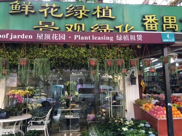 鲜花绿植景观绿化(番禺路店)