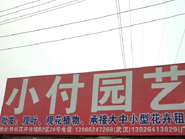 武汉心绿缘园艺有限公司(小付园艺店)