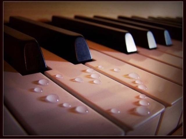 名雅成人钢琴