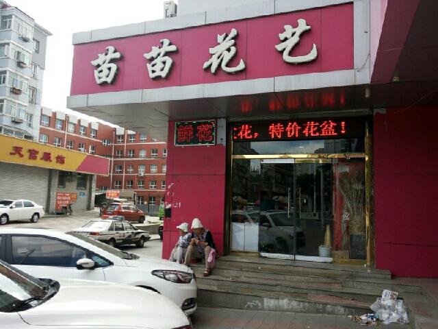 苗苗花艺(胜利北路店)
