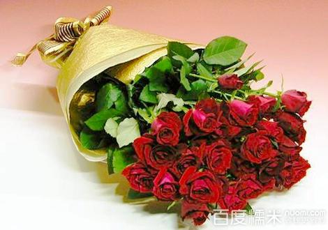 玫瑰小镇蓝羽土盆_玫瑰小镇20支玫瑰