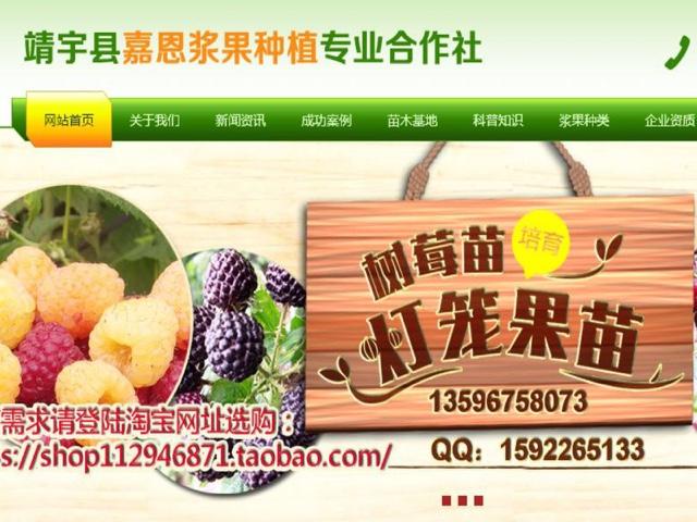 白山嘉恩浆果种植专业合作社