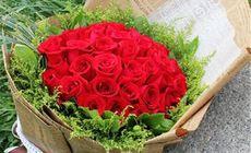 我们的鲜花33支玫瑰