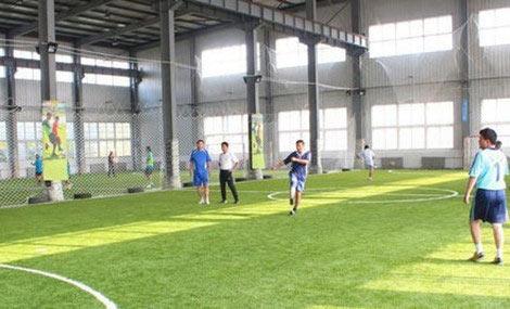 滨海室内足球