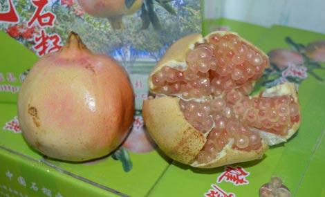 怀远县 >> 美食   标签: 水果 美食 白乳泉石榴总汇共多少人浏览图片