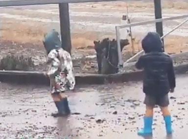 澳大利亚人雨中狂喜