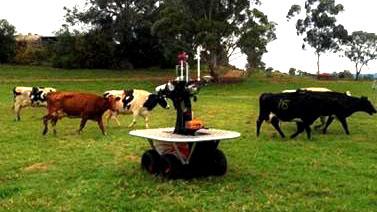 """天啊!澳大利亚发明""""牛仔""""机器人 能牧羊能放牛"""