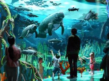 7个古怪海洋现象大揭秘