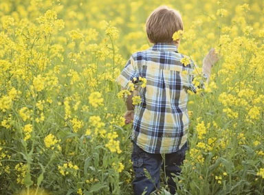 不满爸妈灭鼠,小男孩开启说教模式