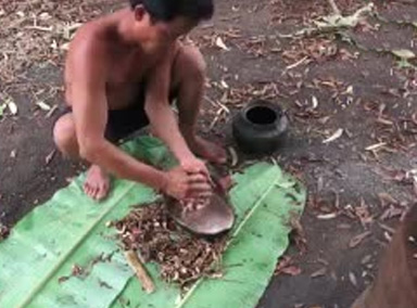 柬埔寨贝爷直接用树根做了个果冻, 不服不行