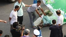 男子东莞遭撞后被拖行20公里至深圳 头颅掉落