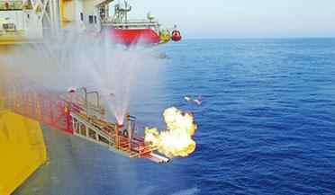 中国科学家在南海发现裸露可燃冰