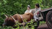 《倚天屠龙记》第43集精彩看点:赵敏想归隐生活令张无忌心动