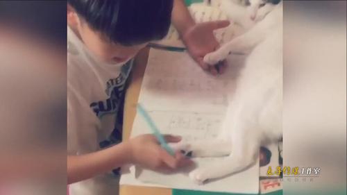 小男孩每天作业做不好老师很生气 妈妈拍视频证清白!