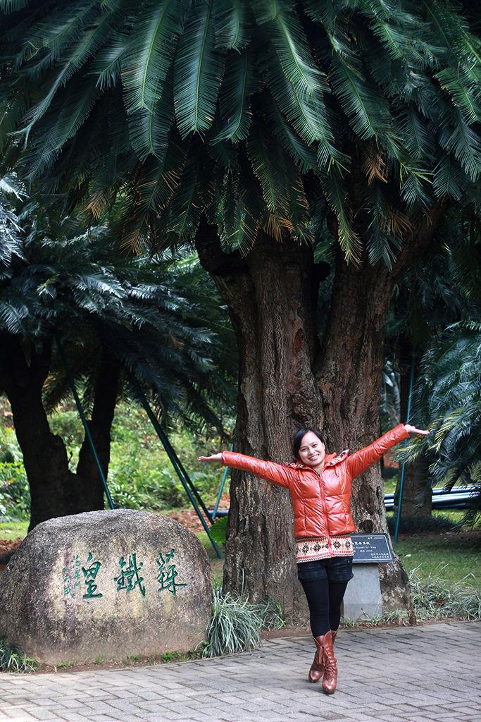 仙湖植物园有什么景点