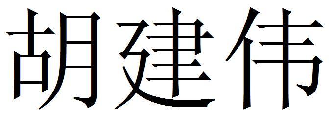 胡建伟 宋体字图片