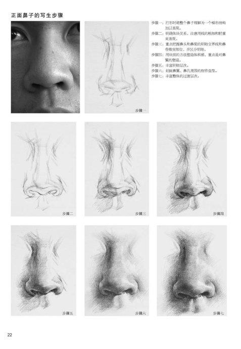 素描鼻子 画法图片