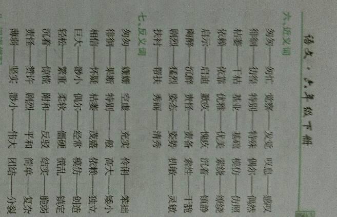13近义词24反义词的词语
