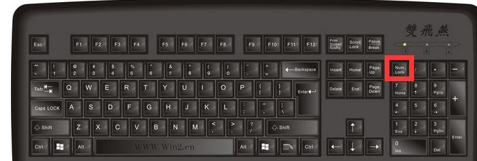 笔记本键盘不能用_笔记本小键盘numlock灯亮,数字键却无法使用,怎么办?