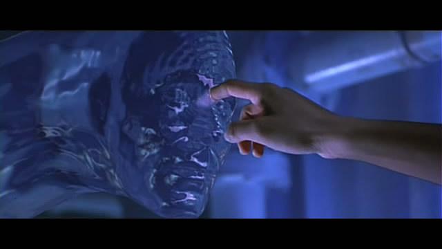 求教一部美国关于水中怪兽的电影的名字!
