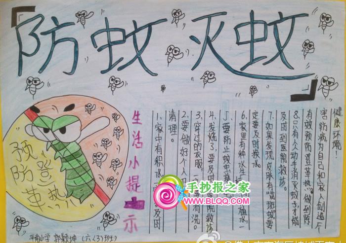 春季灭蚊防病毒手抄报内容