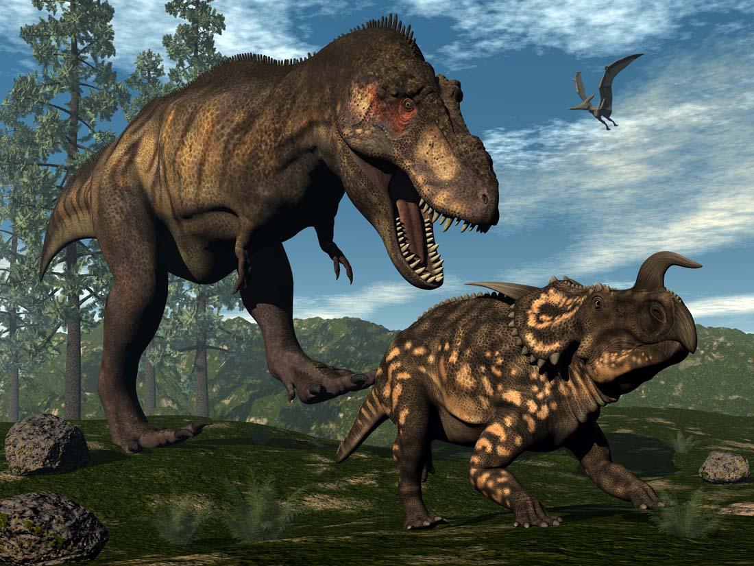 请问有适合学龄儿童看的恐龙世界动画片吗?图片