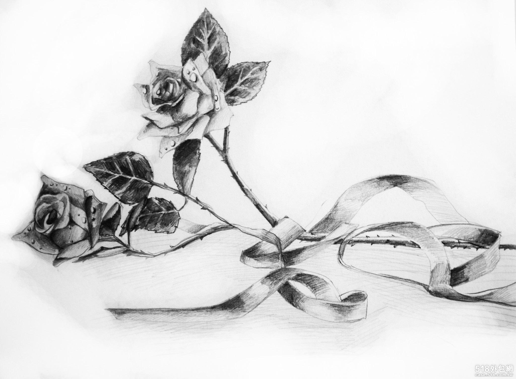 ... 玫瑰素描素描一支玫瑰的图画 一支玫瑰花素描图图片