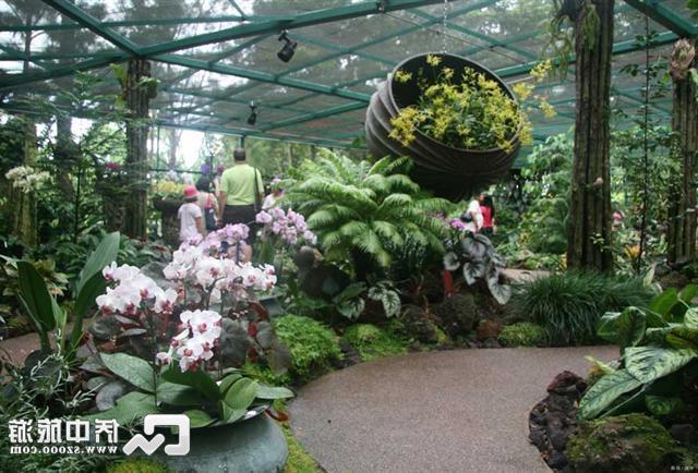 新加坡植物园门票