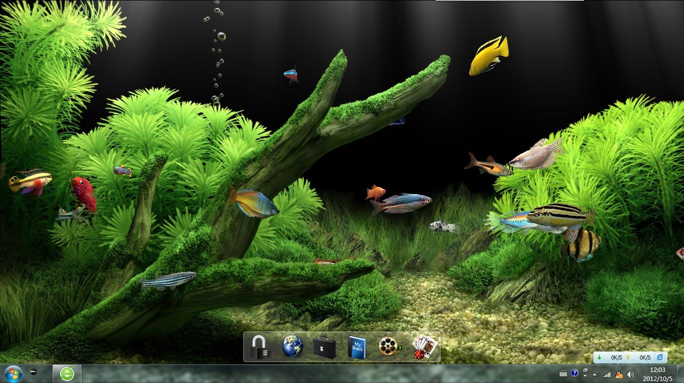 windows7系统可以下载水族动态屏保吗图片
