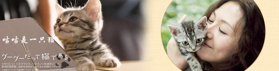 咕咕是一只猫百度网盘
