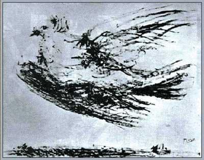 2008和平鸽故事