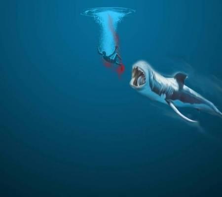 鲨血浴囹�a_只不过是把鲨鱼和血去掉的.只要人掉到海里.