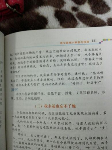 作文胜似亲人400字关于自己的故事