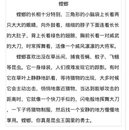 5篇200字v日记日记初中红星海图片
