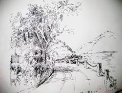 怎么用钢笔画樱花树?图片