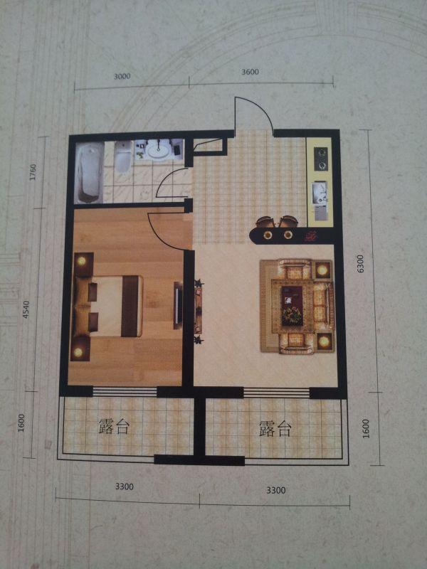 一室一厅的房子,平面图如下,厨房和客厅一体,应该怎么设计装修,高清图片