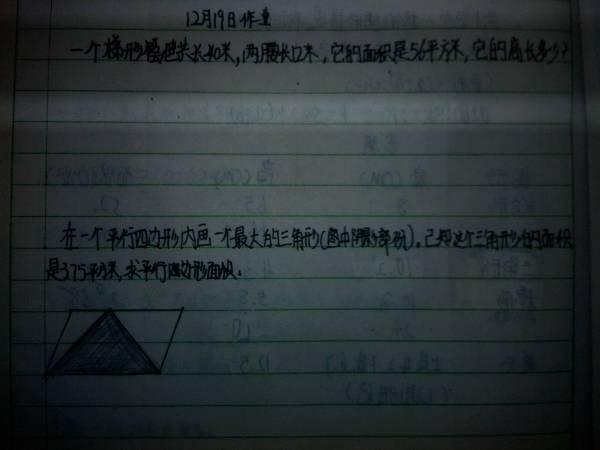 这两题.小学五年级数学.图形.图片