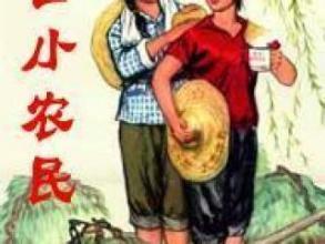 免费小说巅峰小农民