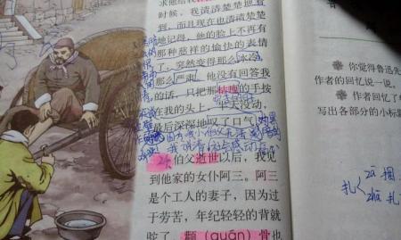 文上册 18.我的伯父鲁迅先生 教案