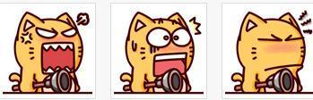 皮揣子猫qq表情分享展示图片
